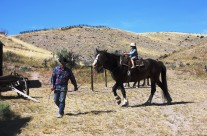 Bannack Days and Horseback Rides